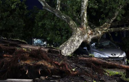Cars are pictured damaged by a fallen tree in a Gelsenkirchen dealership