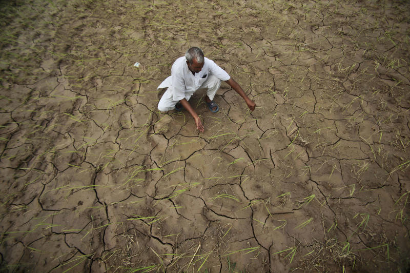 """FILE - In this Aug. 3, 2012 file photo, an Indian farmer shows a dry, cracked paddy field in Ranbir Singh Pura 34 kilometers (21 miles) from Jammu, India. A United Nations panel of scientists has drafted a list of eight ``key risks"""" about climate change that's easy to understand and illustrates the issues that have the greatest potential to cause harm to the planet. The list is part of a massive report on how global warming is affecting humans and the planet and how the future will be worse unless something is done about it. The report is being finalized at a meeting on the weekend of March 29, 2014 by the Intergovernmental Panel on Climate Change. (AP Photo/Channi Anand, File)"""