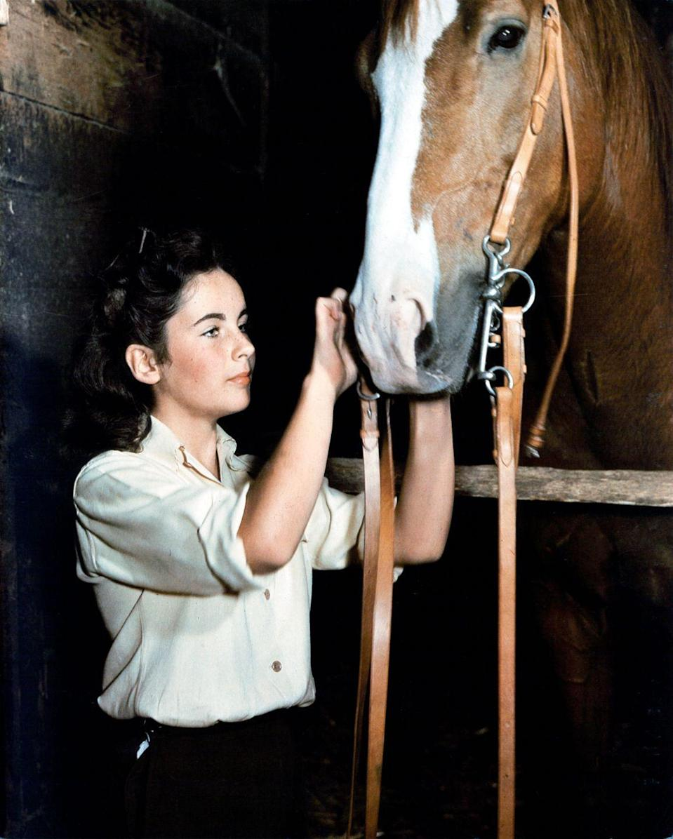 """<p>Elizabeth, a huge animal lover, formed a special connection with King Charles, the horse cast as The Pie in <em>National Velvet </em>— so much so that after filming, the <a href=""""https://www.imdb.com/title/tt0037120/trivia"""" rel=""""nofollow noopener"""" target=""""_blank"""" data-ylk=""""slk:studio gifted"""" class=""""link rapid-noclick-resp"""">studio gifted</a> Elizabeth the horse and she remained his owner until his death. </p>"""
