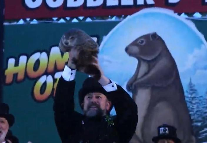Pennsylvania's most famous groundhog emerged from the snow and saw his shadow and declared there would be six more weeks of winter   on Tuesday, Feb. 2, 2021.  / Credit: https://www.groundhog.org/