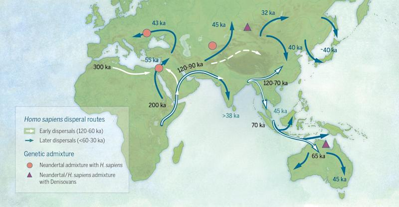 Early human migration from Africa started earlier than scientists thought