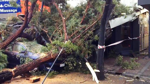 The clean up begins after harrowing weather lashed South Australia. Photo: 7News