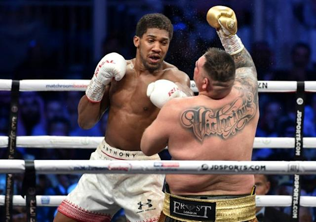 British boxer Anthony Joshua rocks Andy Ruiz on his way to regaining his world heavyweight titles (AFP Photo/)