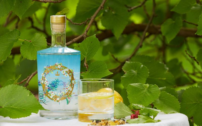 Buckingham Palace gin pictured in Buckingham Palace garden with a mulberry tree - RCT
