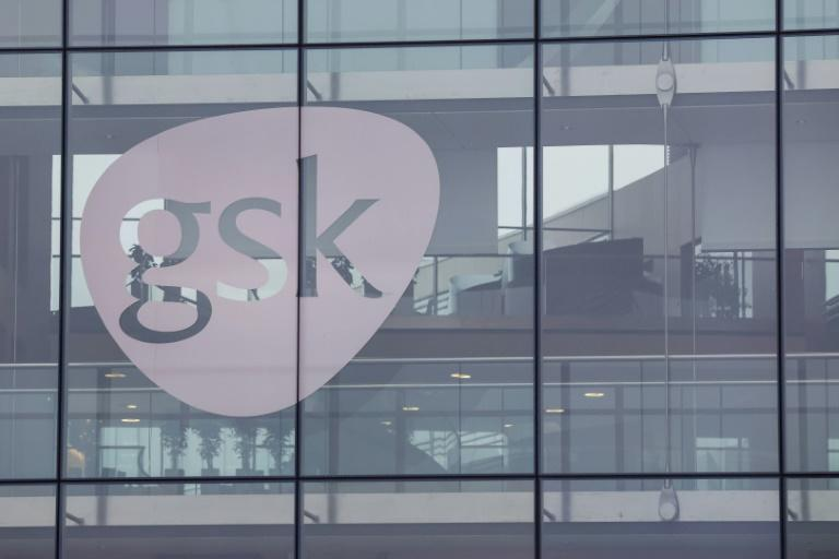 Britain's GSK is one of the largest pharmaceutical companies in the world