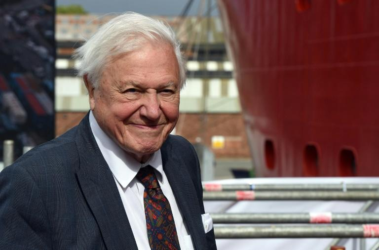 "Britain's Sir David Attenborough said ""all is not lost"" (AFP Photo/Asadour Guzelian)"
