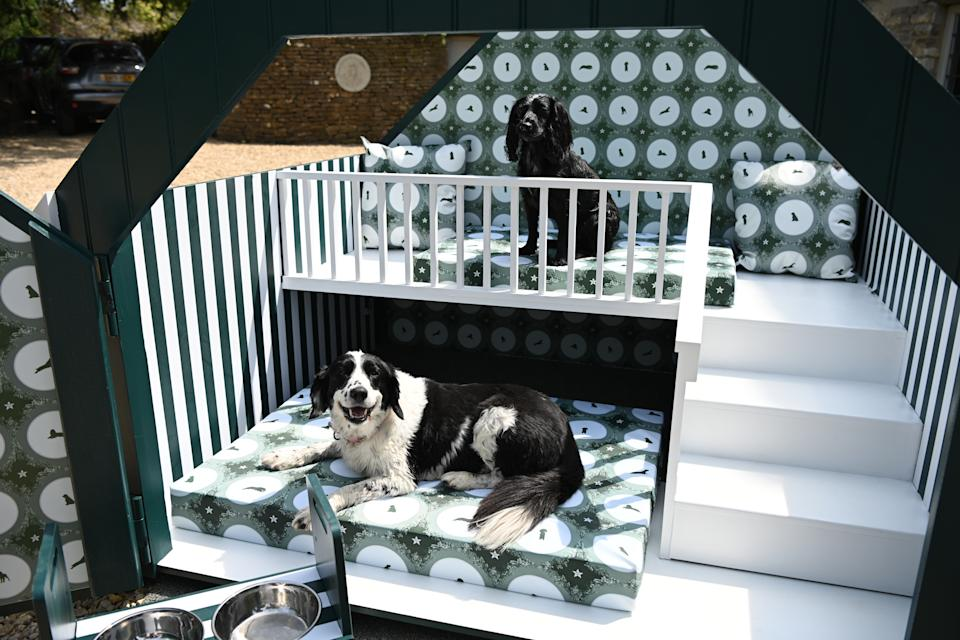 Laurence Llewelyn-Bowen's own dogs testing out the features in the dog house. (YuMOVE/Doug Peters/PA Wire)