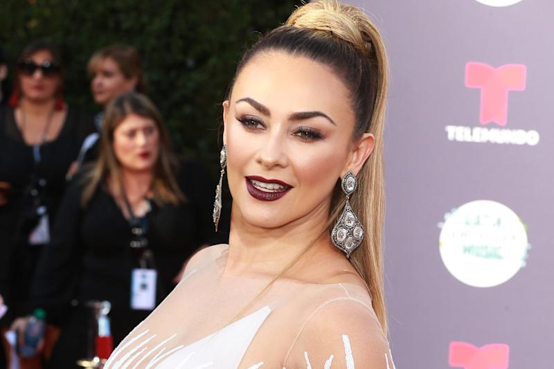 HOLLYWOOD, CA - OCTOBER 25: Aracely Arambula attends the 2018 Latin American Music Awards - Arrivals at Dolby Theatre on October 25, 2018 in Hollywood, California. (Photo by Leon Bennett/WireImage)