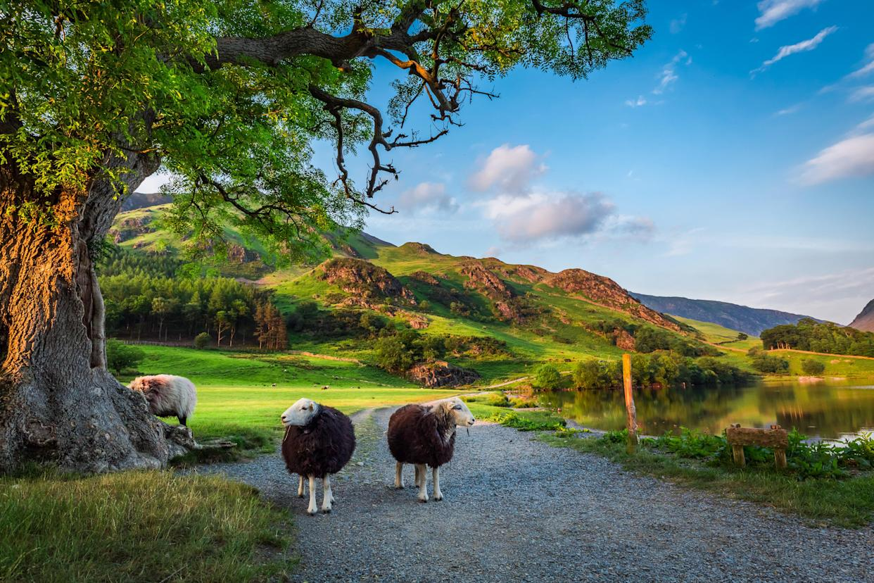 The Lake District, has been voted the world's most Instagrammable natural hotspot. (Supplied Body Shop/shaiith - stock.adobe.com)