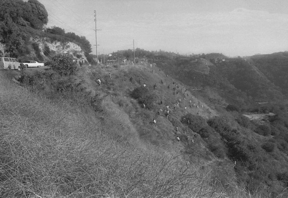 "<p>Police comb the Hollywood hillside searching for clues in the Sharon Tate murder case at the hands of the notorious <a href=""https://www.cosmopolitan.com/entertainment/movies/a28467204/charles-manson-sharon-tate-true-story/"" rel=""nofollow noopener"" target=""_blank"" data-ylk=""slk:Manson clan"" class=""link rapid-noclick-resp"">Manson clan</a>. The Manson family cult terrorized the Hollywood community in the summer of '69.</p>"