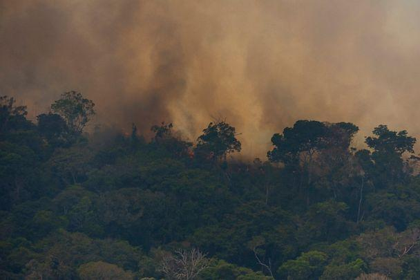 PHOTO: Fire consumes the jungle near Porto Velho, Brazil, Friday, Aug. 23, 2019. Brazilian state experts have reported a record of nearly 77,000 wildfires across the country so far this year, up 85% over the same period in 2018. (Victor R. Caivano/AP)