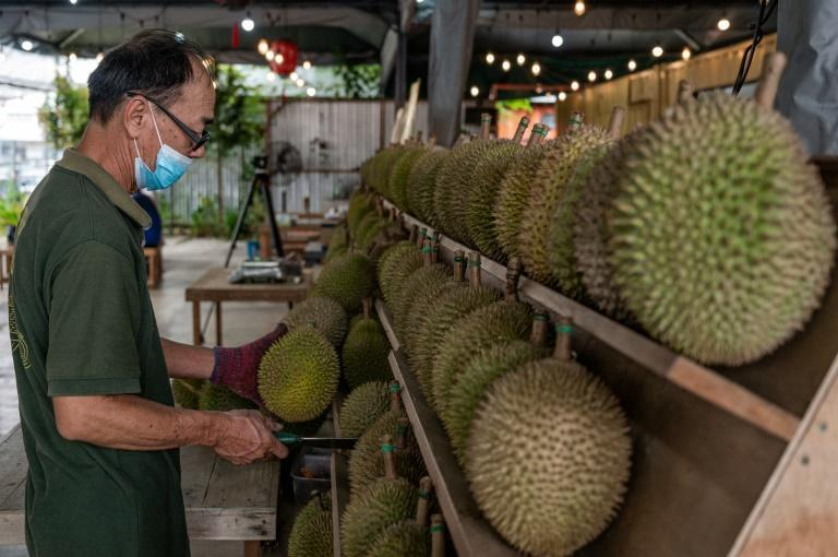 A worker inspecting durians in Kuala Lumpur