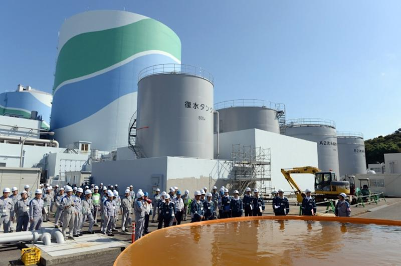 Kyushu Electric Power's Sendai nuclear power plant at Satsumasendai city in Kagoshima prefecture, Japan's southern island of Kyushu, on September 20, 2013 (AFP Photo/Japan Pool)