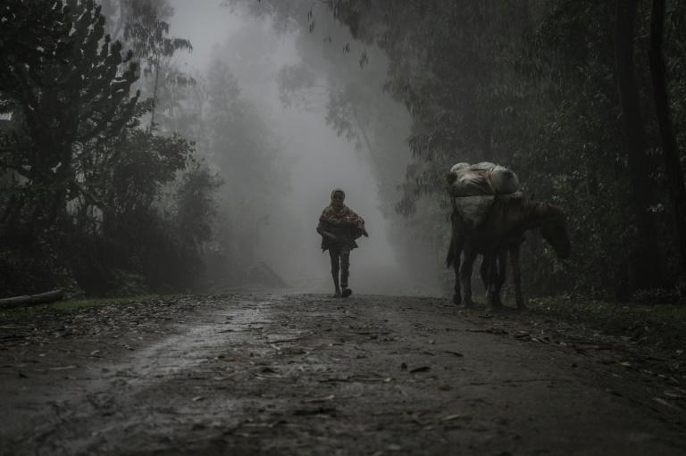 A boy walks in the fog near Chenna, which people have fled since the mass killings (AFP/Amanuel Sileshi)
