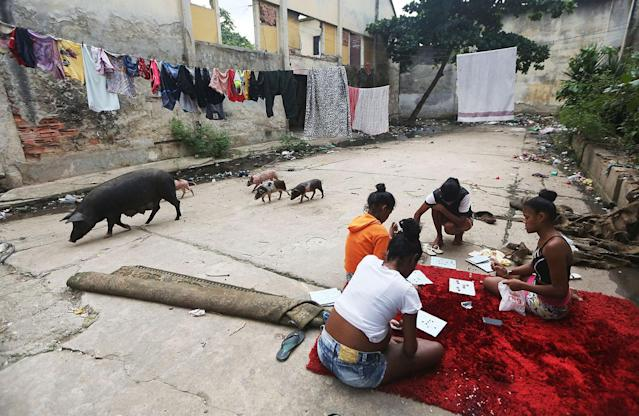 <p>Pigs walk past children playing outside a home in the Mangueira favela in Rio de Janeiro, May 2, 2017. (Photo: Mario Tama/Getty Images) </p>