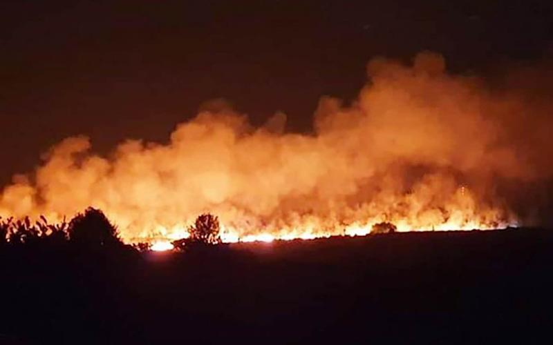The fire at Ashdown Forest - the inspiration for Winnie the Pooh's Hundred Acre Wood - WESSEX NEWS AGENCY