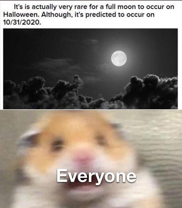 Halloween 2020 Expedite Meme Get in the Spooky Spirit with These Hilarious Halloween Memes