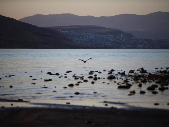 A crane flies low over the Sea of Galilee (Reuters)