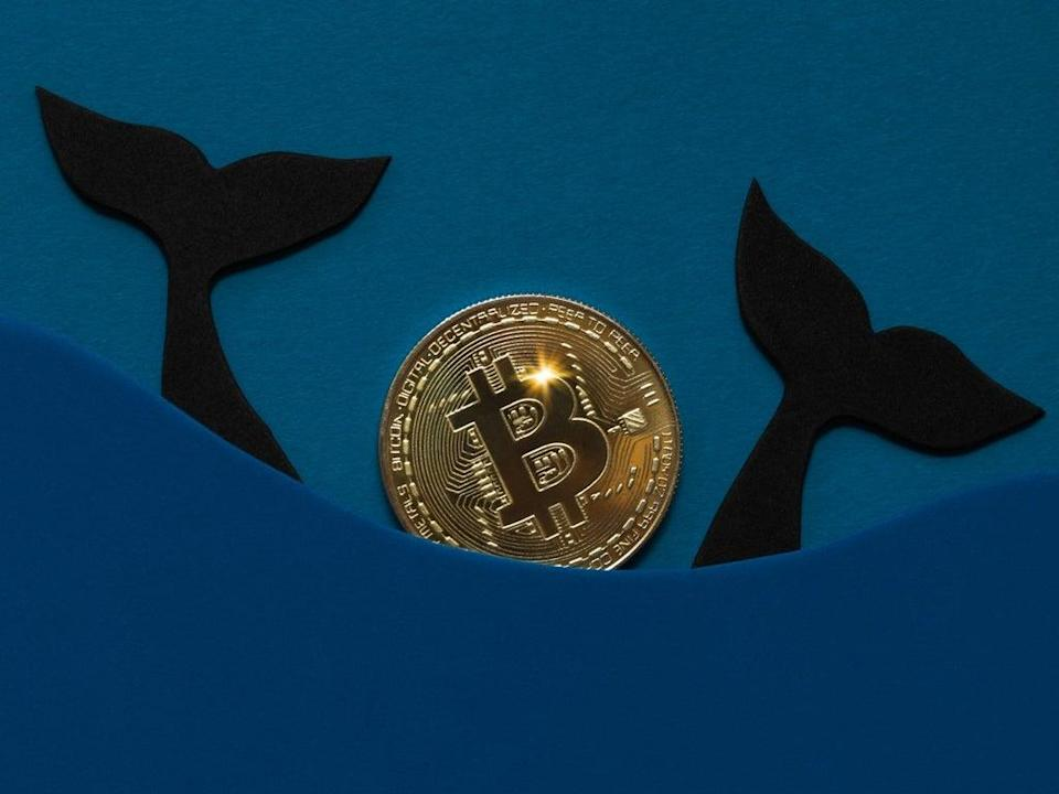 So-called bitcoin whales are once again stockpiling the cryptocurrency in expectation of price gains (Getty Images)