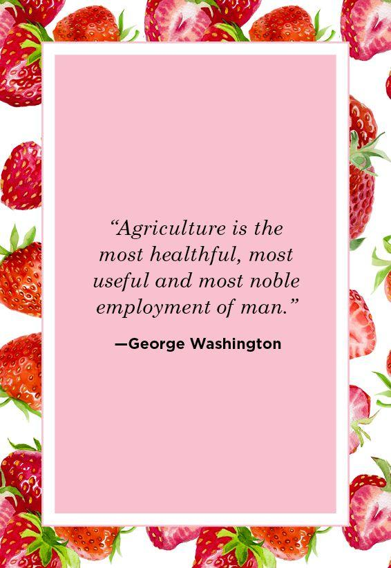 "<p>""Agriculture is the most healthful, most useful and most noble employment of man.""</p>"