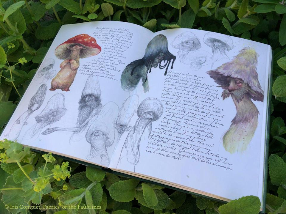 Faeries of the Faultline interior shows sketches and notes about mushroom faeries