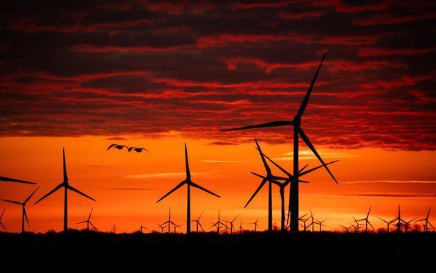 09 March 2021, Hamburg, Bordelum: Wind turbines stand in a wind farm at the North Sea in the sunrise. Photo: Christian Charisius/dpa (Photo by Christian Charisius/picture alliance via Getty Images) (Photo: picture alliance via Getty Images)