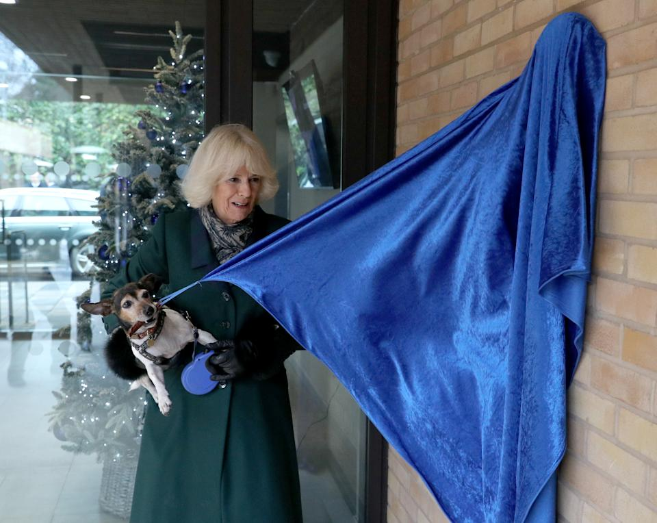 The Duchess of Cornwall with Beth, her jack-russell terrier, unveiling a plaque together, with the help of a sausage to encourage Beth to pull on the string. The pair are visiting the Battersea Dogs and Cats Home to open the new kennels and thank the centre's staff and supporters.