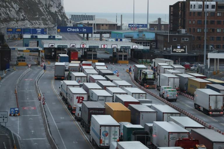 A government study warned of queues at British ports in the event of a no-deal Brexit (AFP Photo/Daniel LEAL-OLIVAS)