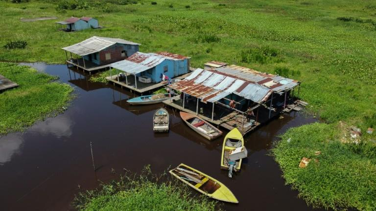 The stilt homes in the Venezuelan village of Congo Mirador are now effectively in a swamp with snakes, toads and parasites that are irrevocably changing the ecosystem (AFP/Federico PARRA)