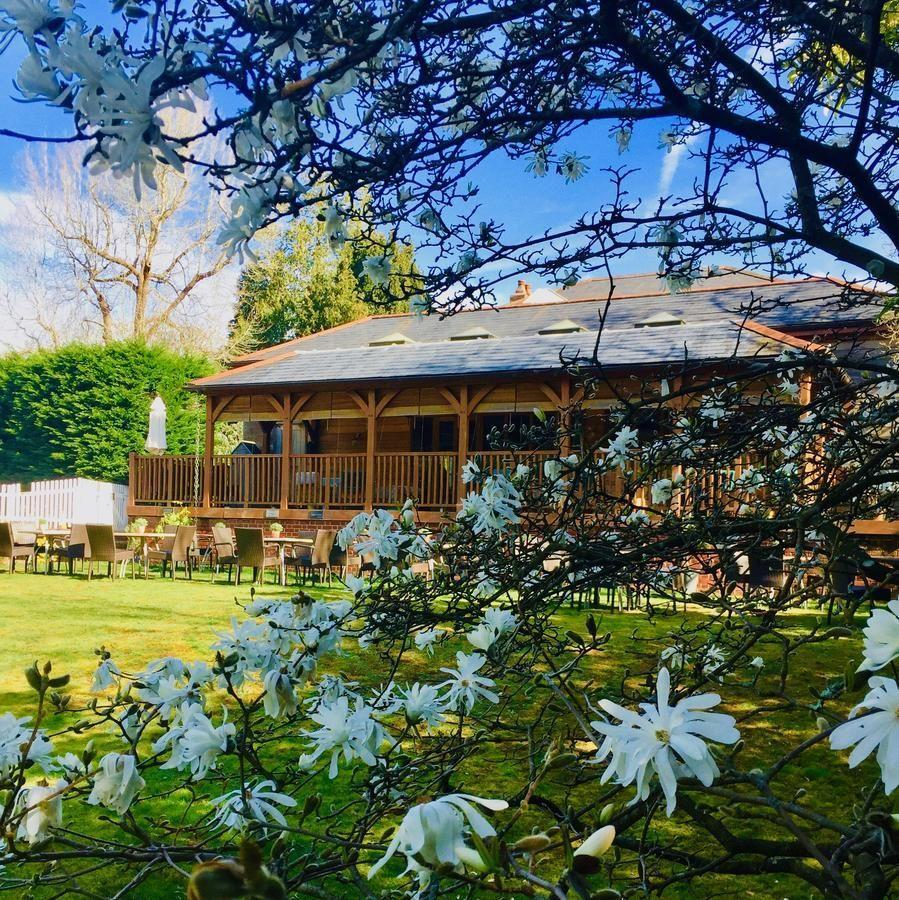 """<p>This luxury bed and breakfast is set in the heart of the beautiful New Forest and boasts 11 charming rooms, many with their own terrace with sun loungers or bistro table set. </p><p><a href=""""https://go.redirectingat.com?id=127X1599956&url=https%3A%2F%2Fwww.booking.com%2Fhotel%2Fgb%2Fterravina-southampton.en-gb.html%3Faid%3D1922306%26label%3Dluxury-bed-breakfast&sref=https%3A%2F%2Fwww.goodhousekeeping.com%2Fuk%2Flifestyle%2Ftravel%2Fg34889859%2Fluxury-bed-and-breakfast%2F"""" rel=""""nofollow noopener"""" target=""""_blank"""" data-ylk=""""slk:Spot in the Woods"""" class=""""link rapid-noclick-resp"""">Spot in the Woods</a>' wraparound wooden veranda is the perfect spot for watching local wildlife, and you'll love the little details, like toiletries made with local lavender, which elevate the experience.</p><p><a href=""""https://www.goodhousekeepingholidays.com/offers/new-forest-lyndhurst-spot-in-the-woods-hotel"""" rel=""""nofollow noopener"""" target=""""_blank"""" data-ylk=""""slk:Read our review of Spot in the Woods."""" class=""""link rapid-noclick-resp"""">Read our review of Spot in the Woods.</a></p><p><a class=""""link rapid-noclick-resp"""" href=""""https://go.redirectingat.com?id=127X1599956&url=https%3A%2F%2Fwww.booking.com%2Fhotel%2Fgb%2Fterravina-southampton.en-gb.html%3Faid%3D1922306%26label%3Dluxury-bed-breakfast&sref=https%3A%2F%2Fwww.goodhousekeeping.com%2Fuk%2Flifestyle%2Ftravel%2Fg34889859%2Fluxury-bed-and-breakfast%2F"""" rel=""""nofollow noopener"""" target=""""_blank"""" data-ylk=""""slk:CHECK AVAILABILITY"""">CHECK AVAILABILITY</a></p>"""