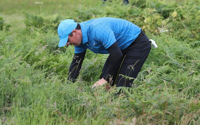 Rory McIlroy finds thick rough on his way to a quadruple bogey eight at the first - AP