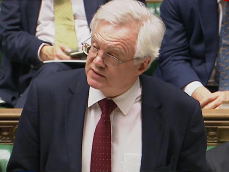 Brexit Secretary David Davis addressing the House of Commons (Sky)