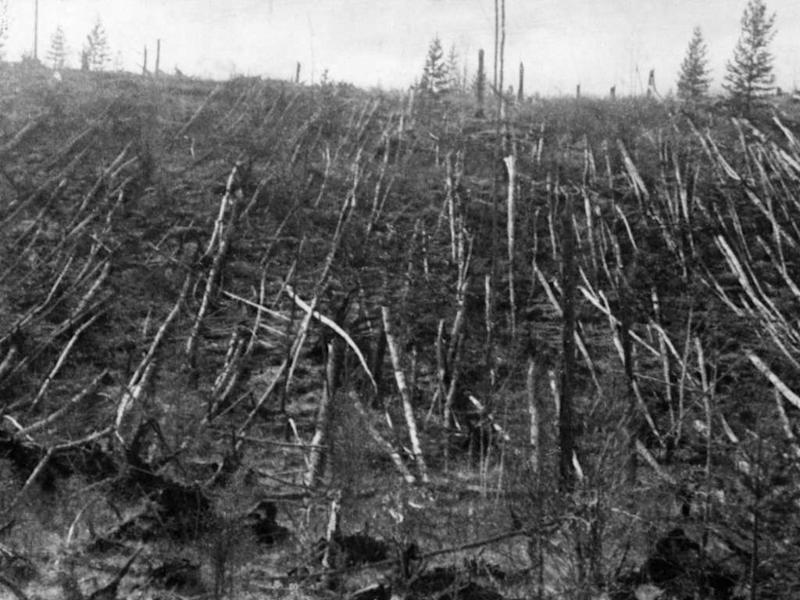 A mysterious blast in 1908, thought to be caused by a meteor, flattened a Siberian taiga forest. Image courtesy: Sovfot/Universal Images