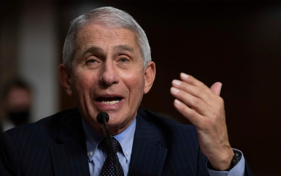 Dr Anthony Fauci is the US director of the National Institute of Allergy and Infectious Diseases
