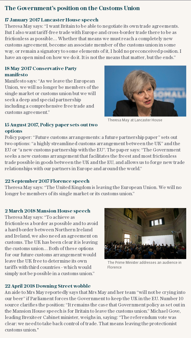 The Government's position on the Customs Union