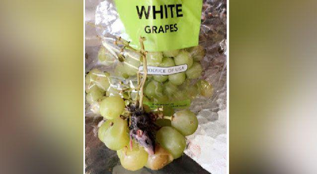 Mr Souter was shocked to find the mouse at the bottom of his bag of grapes. Source: Ryan Souter