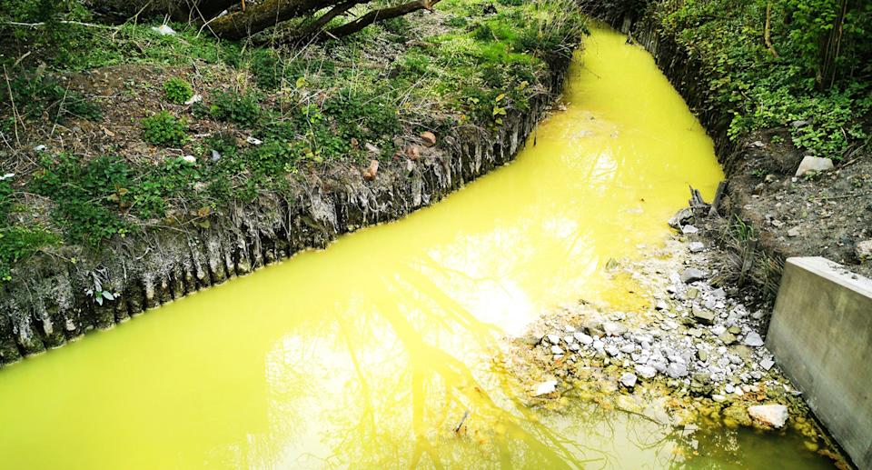 Neon yellow river in Glasgow.