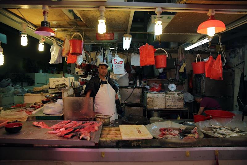 Popular, threatened seafood in Hong Kong include grouper, wild sea cucumber and humphead wrasse -- a coral reef fish (AFP Photo/Isaac Lawrence)