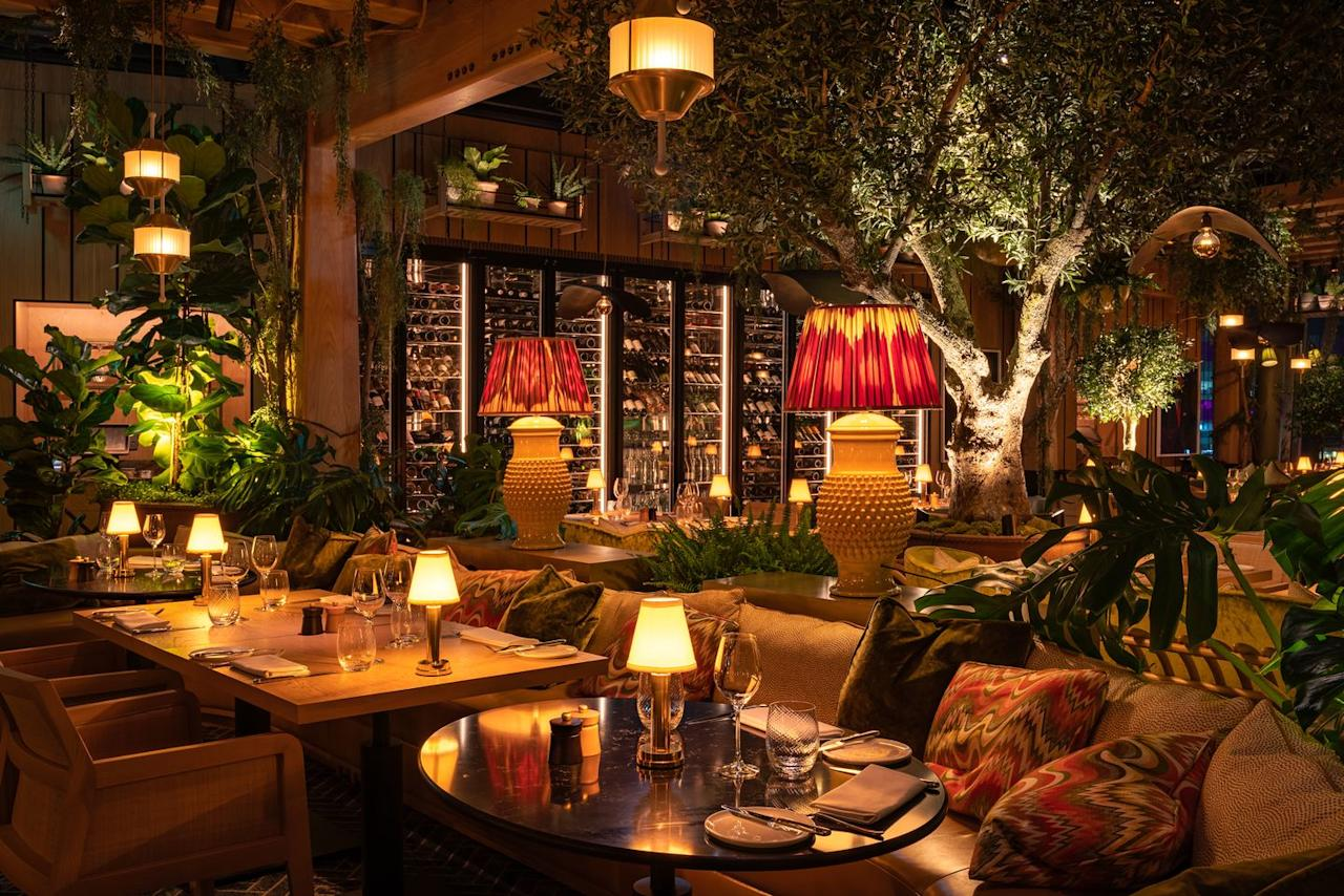 "<p>If you love your flora and fauna, get yourself down to London's new city restaurant 14 Hills which is decorated with more than 1,000 different trees and plants. With dim, soft lighting, plus 1970s-inspired interiors, and wooden furnishings, this is pretty much our dream romantic location to spend the night over a bottle of wine with a partner. </p><p>Fortunately, the menu is just as impressive as its interiors, with starters including kind scallops, duck liver and celeriac, mains featuring salmon, Rossini and turbot and desserts like roasted pear, chocolate tarts and chilled rice vanilla puddings. </p><p>On Thursdays, Fridays and Saturdays, the restaurant turns into a late-night hub of activity with drinks and music from its resident DJ.</p><p><strong>Click <a href=""https://14hills.co.uk/"" target=""_blank"">here</a> to find out more.</strong></p><p><strong>Locations: 120 Fenchurch St, London EC3M 5BA</strong></p>"
