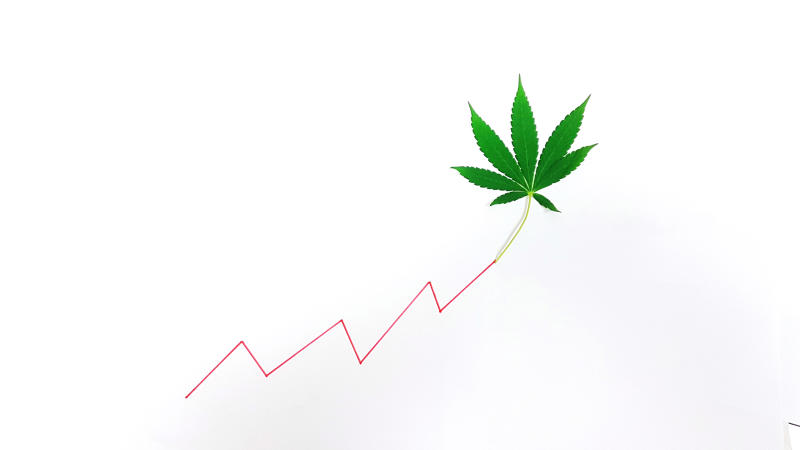 Marijuana leaf at the end of a line trending upward
