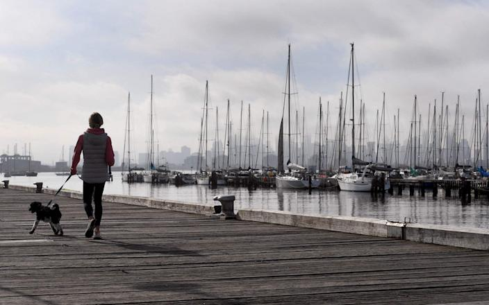 A woman walks her dog in Melbourne on June 11, 2021, as the city eases restrictions after a two-week lockdown following a surge in Covid-19 figures. - AFP