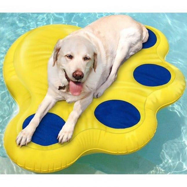 Paws Aboard Inflatable Doggy Lazy Raft