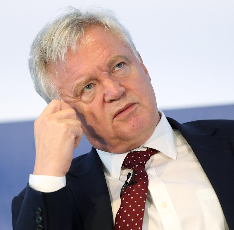<strong>Brexit Secretary David Davis may not be keen on the suggestions for a Brexit hit squad</strong>