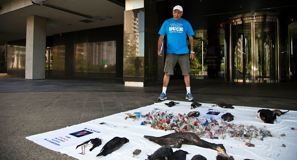 Laurie Levy stands behind an array of dead birds in from of an official looking building.