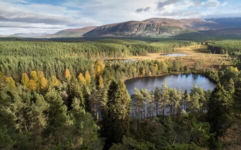 This series will be based in the Cairngorms - Credit: Getty