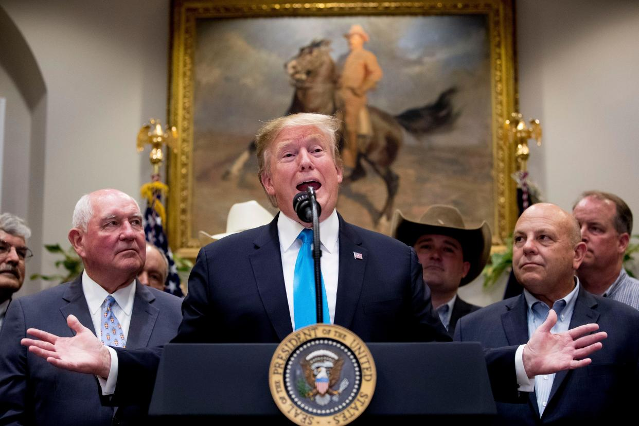 President Trump speaks to reporters in the Roosevelt Room of the White House. (Photo: Andrew Harnik/AP)