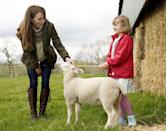 <p>Here, Kate stops to pet a lamb while Clover Chapman looks on. </p>