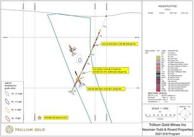 Figure 5:  Section for hole NT21-183 showing significant mineralized intersections. (CNW Group/Trillium Gold Mines Inc.)