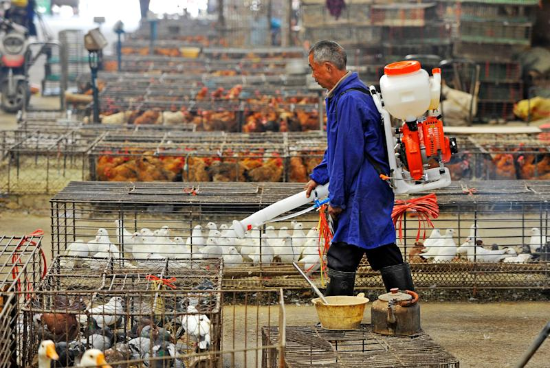 Concern about zoonotic diseases have grown since coronavirus outbreak in Wuhan, where livestock markets are sterilised (AFP via Getty Images)