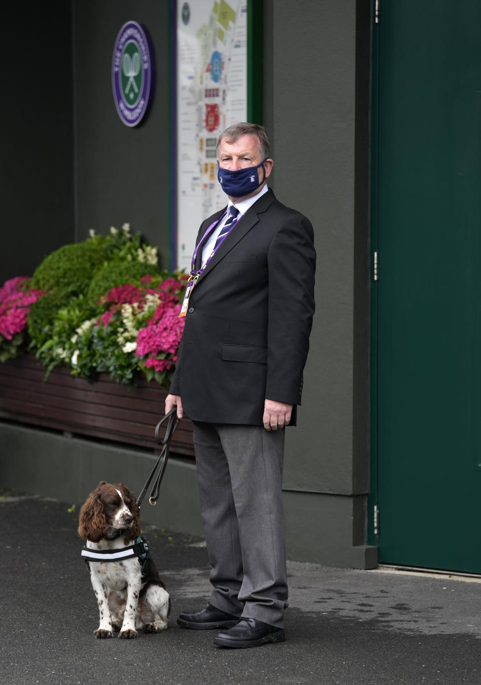 A security dog in the grounds on day one of the Wimbledon Tennis Championships in London, Monday June 28, 2021. (AP Photo/Kirsty Wigglesworth)
